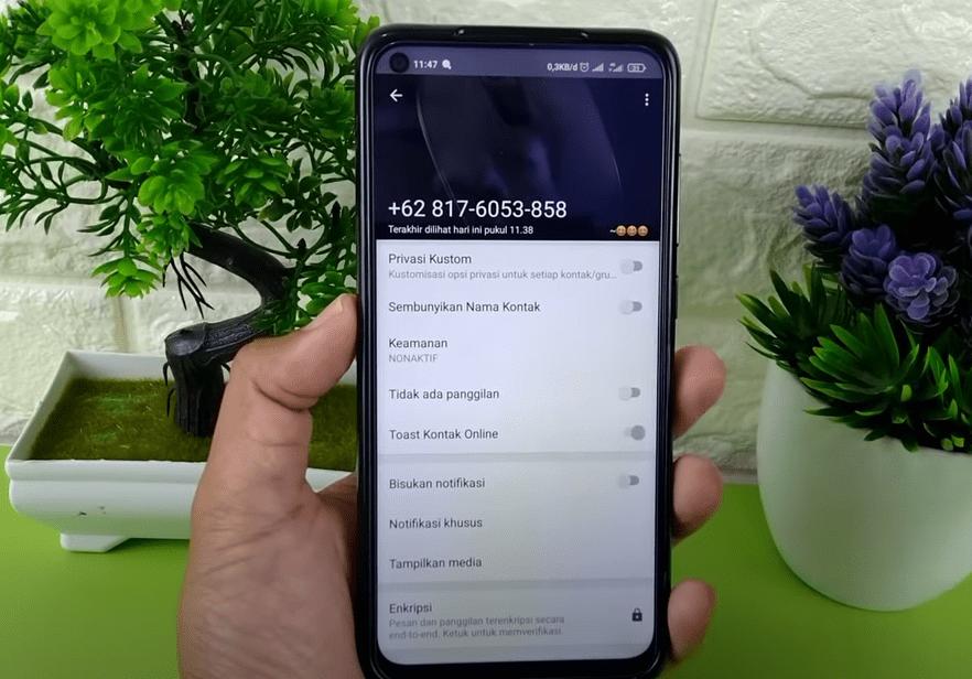 Copy Nomor Whatsapp