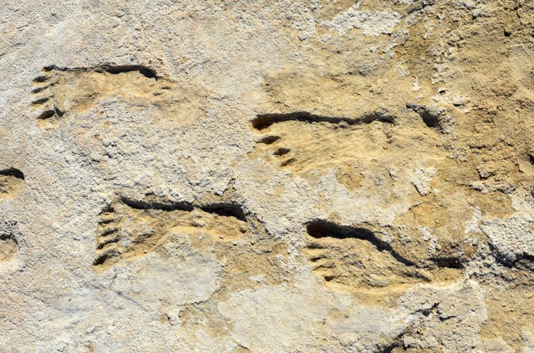 Jejak kaki di New Mexico ini mungkin menulis ulang sejarah penduduk Amerika